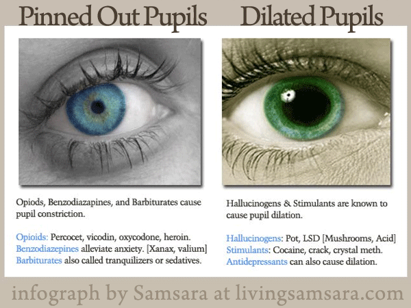 Pupil Dilation and Constriction via Drugs